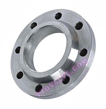 ITALY Standard Flanges (2)